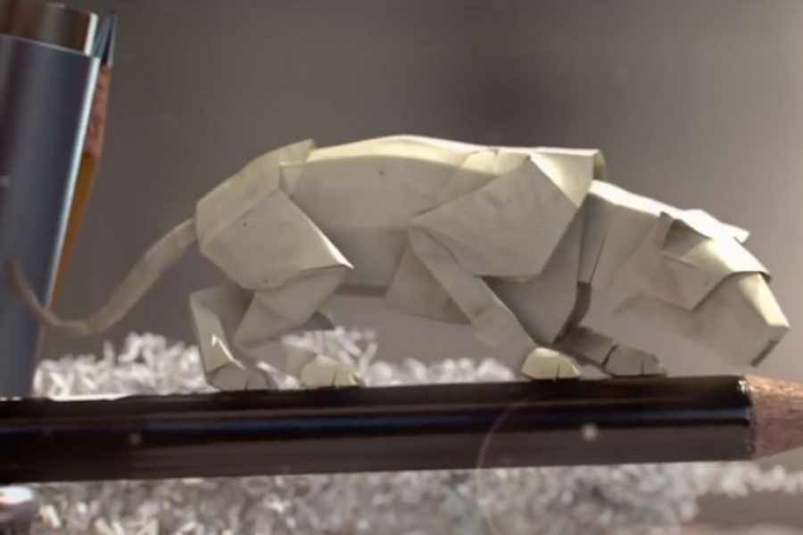 Step into miniature world of animated paper wildlife